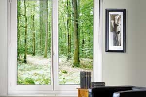 Art et fenêtres