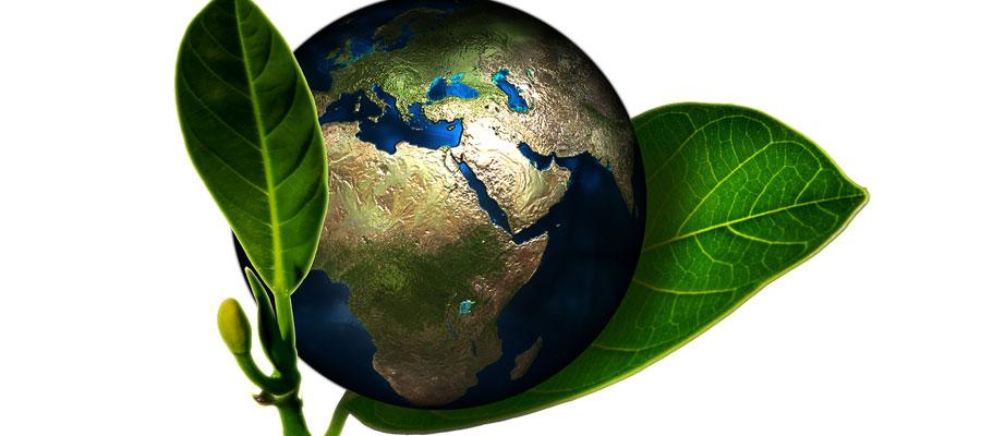 Les nouvelles résolutions pour l'écologie